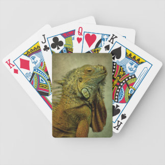 Green Iguana Poker Deck