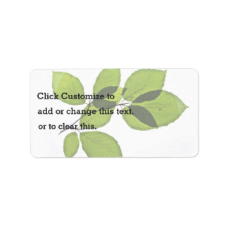 Green leaves address label