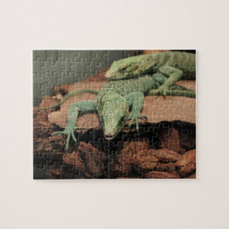 Green Lizards Jigsaw Puzzle