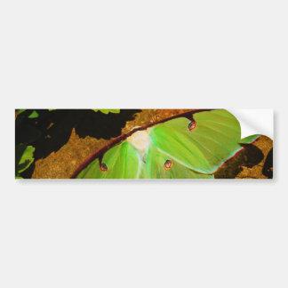 Green Luna moth Bumper Sticker