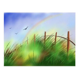 Green Meadow Post Card