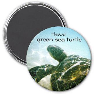 Green Sea Turtle 7.5 Cm Round Magnet