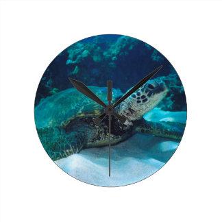 Green Sea Turtle Wallclocks