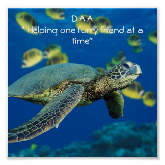"""Green Sea Turtle, D.A.A"""" Helping one furry frie... Poster"""
