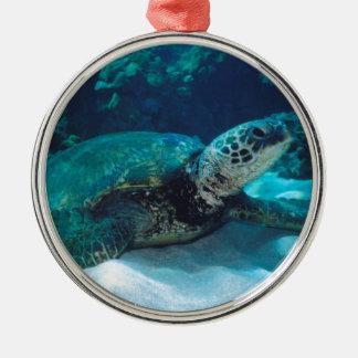 Green Sea Turtle Christmas Tree Ornament