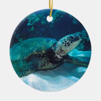 Green Sea Turtle Ornaments