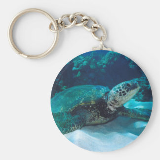 Green Sea Turtle Key Chain