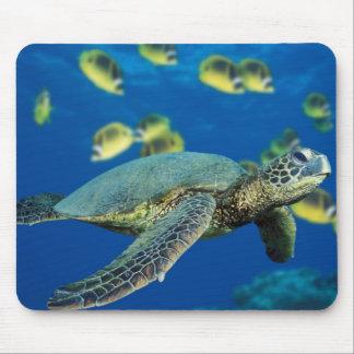 Green Sea Turtle Mouse Pad
