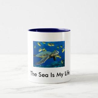 Green Sea Turtle Mug