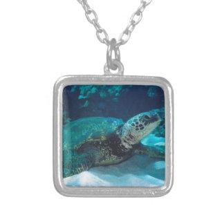 Green Sea Turtle Necklaces