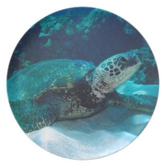 Green Sea Turtle Dinner Plate