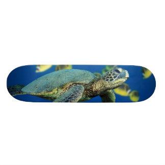 Green Sea Turtle Skate Board Decks
