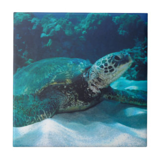 Green Sea Turtle Tiles