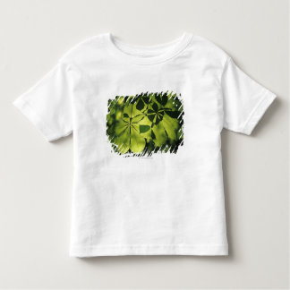 Green Seven Point Leaves with Sun Illumination Toddler T-Shirt