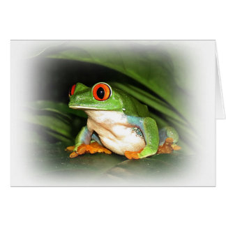 Green Tree Frog Card