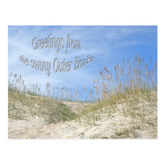 Greetings From Sunny OBX Sea Oats Items Postcard