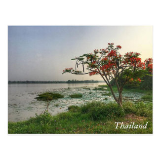 Greetings from Thailand Postcard