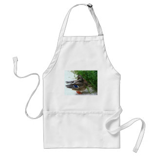 Grey Bird with Blue on Feather and Orange Feet Adult Apron