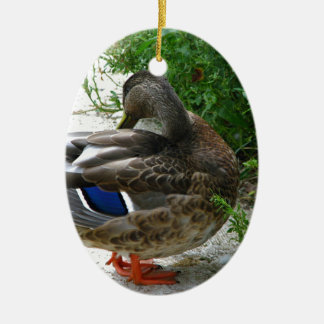 Grey Bird with Blue on Feather and Orange Feet Ceramic Oval Decoration