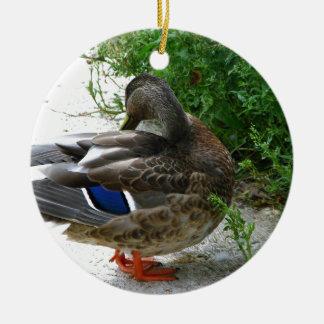 Grey Bird with Blue on Feather and Orange Feet Round Ceramic Decoration