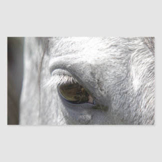 Grey Quarter Horse Stallion Rectangular Sticker