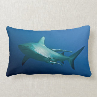 Grey Reef Shark on the Great Barrier Reef Lumbar Cushion