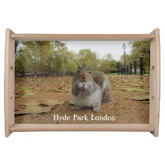 Grey Squirrel Hyde Park London. Serving Tray