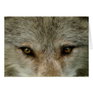 Grey Wolf Wildlife and Nature Design Card