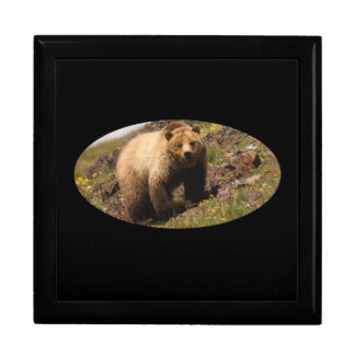 Grizzly bear and wildflowers gift box