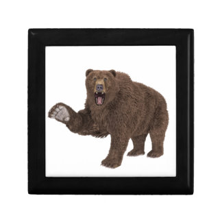 Grizzly Bear Gift Box