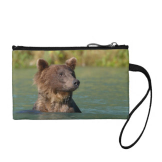 grizzly bear swimming coin purse