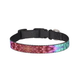 Groovy Man Colorful Dog Collars
