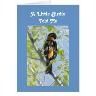 Grosbeak Drawing Get Well Template Greeting Card