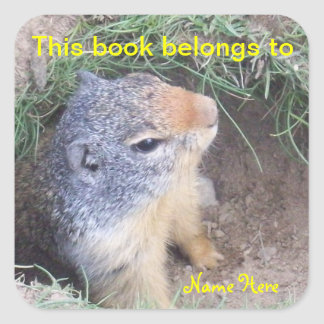 Groundhog This Book Belongs To, Bookplate Sticker