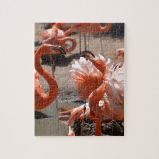 Group of Cuba flamingos Jigsaw Puzzle