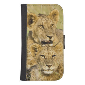 Group of lion cubs, Panthera leo, Masai Mara, Samsung S4 Wallet Case
