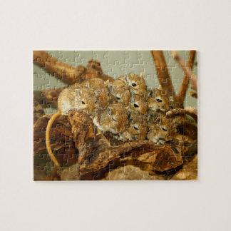 Group of Mongolian Gerbils Meriones Unguiculatus Jigsaw Puzzle