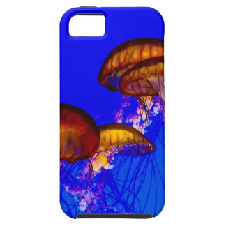 Group of Orange Jelly Fish iPhone 5 Covers