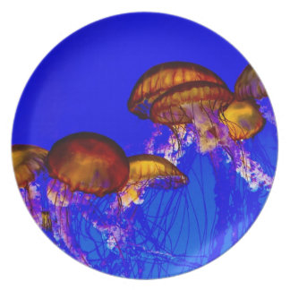 Group of Orange Jelly Fish Party Plates
