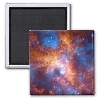 GROWING TARANTULA (outer space) ~ Magnet
