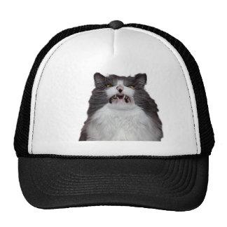 grumpy hats grumpy trucker hat designs. Black Bedroom Furniture Sets. Home Design Ideas
