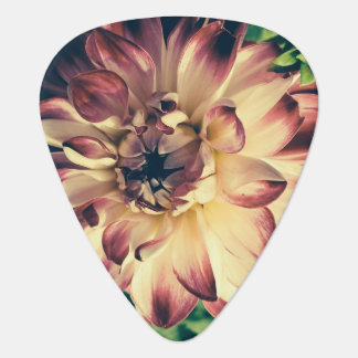 Grunge flower guitar pick