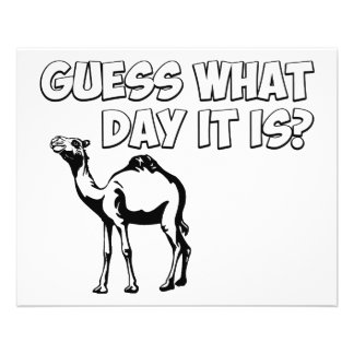 Guess What Day it Is? Hump Day Camel Flyer