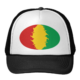 Guinea Conakry Gnarly Flag Hat