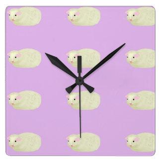 guinea pig clock
