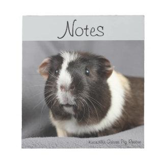Guinea Pig Notepad