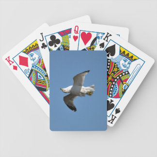Gull Flying Upside Down Funny Wildlife Photography Bicycle Playing Cards