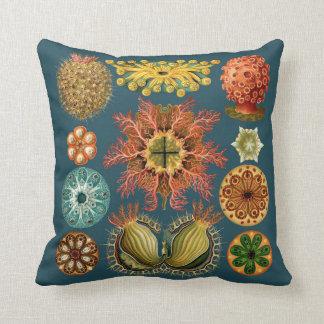 Haeckel Echinoderm pillow teal