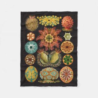 Haeckel Fleece Blanket