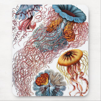 Haeckel Jellyfish Mouse Pad